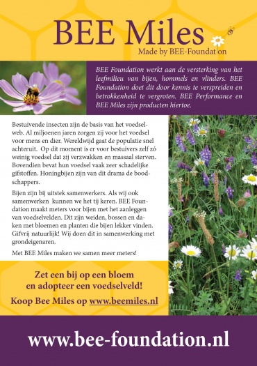 Flyer BEE Foundation
